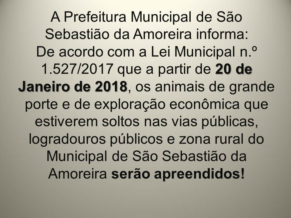 ATENÇÃO: LEI MUNICIPAL N.º 1.527/2017 (ANIMAIS DE GRANDE PORTE SOLTO EM VIAS PÚBLICAS)
